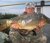 Изображение в Хобби и увлечения Рыбалка Приглашаем на рыбалку и подводную охоту на в Санкт-Петербурге 1000