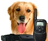Фото в Домашние животные Товары для животных Электронный ошейник- это радиоошейник для в Ростове-на-Дону 2500