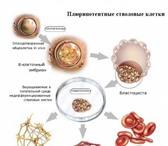 Foto в Красота и здоровье Медицинские услуги Эффективное вылечивание сахарного диабета в Москве 0