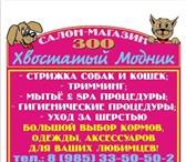 """Фотография в Домашние животные Услуги для животных Зоо салон-магазин """"Хвостатый модник"""" предлагает в Наро-Фоминск 0"""