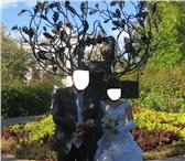 Foto в Одежда и обувь Свадебные платья Продаю красивое свадебное платье на корсете в Дзержинске 0