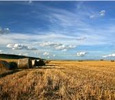 Фотография в Прочее,  разное Разное В наличии земельные участки и сельхоз предприятия в Москве 20000