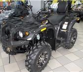 Foto в Авторынок Квадроцикл Продается новый квадроцикл Stels (модель в Омске 352000