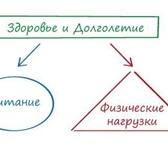 Foto в Красота и здоровье Фитнес Фитнес Школа для людей которые хотят сбросить в Москве 0