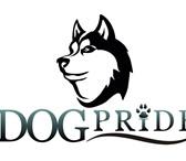Изображение в Домашние животные Услуги для животных Кинологический центр DogPride предоставляет в Орле 0