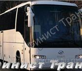 Изображение в Авторынок Междугородный автобус Любые пассажирские перевозки(свадьбы, корпоративы, в Перми 1100