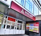 Изображение в Недвижимость Коммерческая недвижимость Сдается небольшой офис в самом центре Новосибирска. в Новосибирске 800