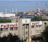 Foto в Недвижимость Аренда нежилых помещений На территории ОАО «Владморрыбпорт» сдаются в Владивостоке 600