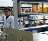 Изображение в Образование Репетиторы Физ-Мат Лицей (профиль биология-химия), Санкт-Петербургский в Калининграде 400