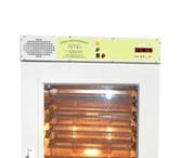 Фото в Домашние животные Товары для животных Инкубатор ТитанИнкубатор Титан предназначен в Орле 42000