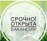 Изображение в Работа Работа на дому Приглашаю всех, заинтересованных получить в Москве 0